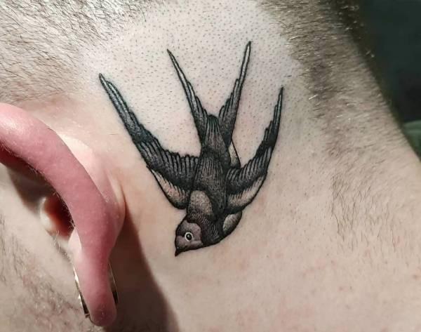 symboliek zwaluw