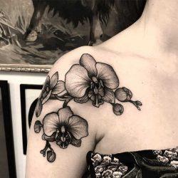 Betekenissen & inspiratie Sterrenbeelden-tatoeages  Waterman tattoo: betekenis en oorsprong & 22x tattoo-inspiratie