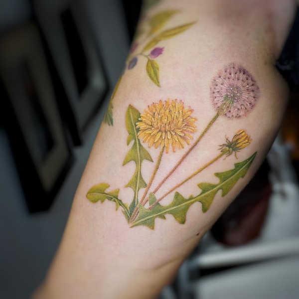 Betekenissen & inspiratie Bloemen  Paardenbloem tattoo: betekenis en 50x tattoo-inspiratie